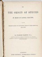 O exemplar da primeira edição do livro A Origem das Espécies, do cientista britânico Charles Darwin, será leiloado no próximo dia 10, em Edimburgo